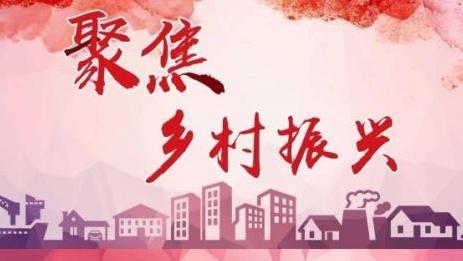 """潍坊寒亭:打赢""""乡村振兴""""硬仗的坚强堡垒"""